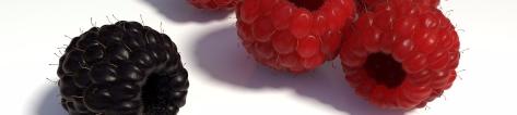 raspberries-1200533_1920.jpg